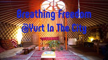 Yurt in the city Wales Breathing Freedom